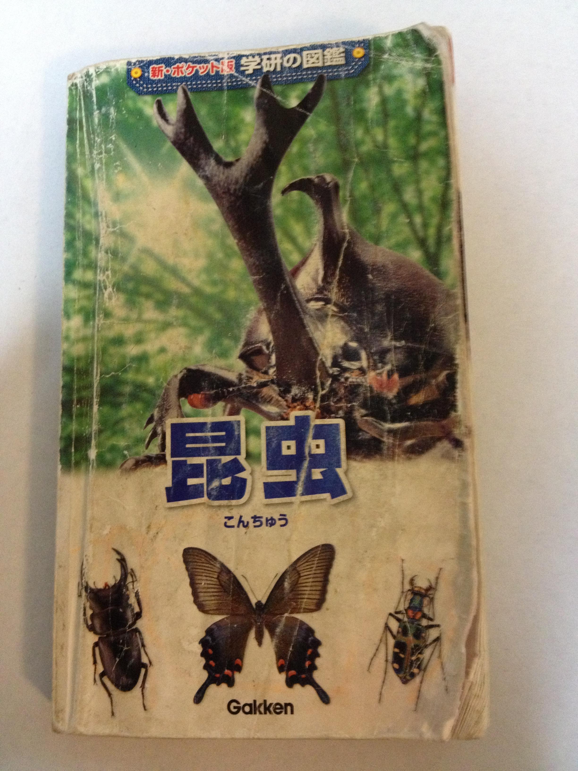 おすすめ 昆虫 図鑑 【厳選】大人も楽しい!オススメの「昆虫図鑑」5冊